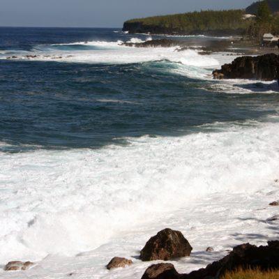 Réunion. Cape Merchant